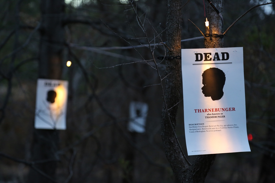 Missing or Dead installation
