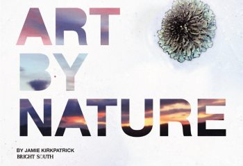 Cover of Art by Nature
